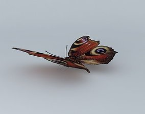 Butterfly peacockbutterfly 3D model