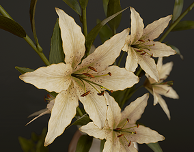 Bouquet with Lilies - PBR Game Ready 3D asset