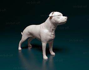 3D print model Staffordshire bull terrier