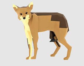 Coyote 3D asset