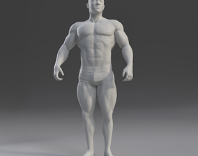 Male Anatomy Study 3D