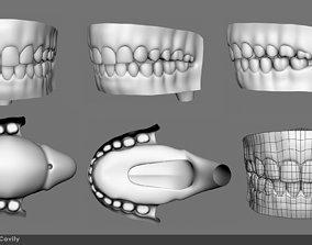 Mouth inner cavity 3D model
