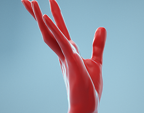 3D Stretched Backwards Realistic Hand Model 04