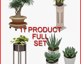 Plant Set 01 11 Product 3D