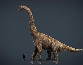 Brachiosaurus 3D asset