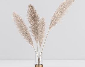 pampas in vase 01 3D