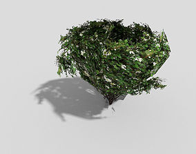 3D asset game-ready low poly shrub