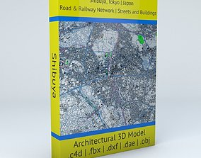 3D Shibuya Railway System Road Network Streets and