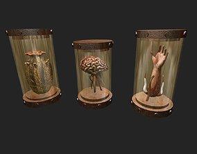 3D asset Preserved Specimens in Jars