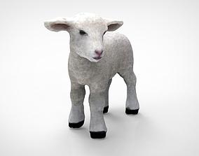 farm 3D model SHEEP