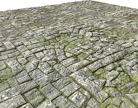 3D model Old Mossy Floor Seamless PBR
