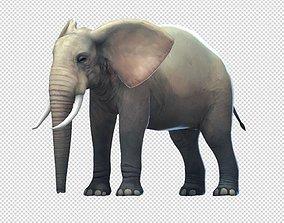 3D asset Elephas