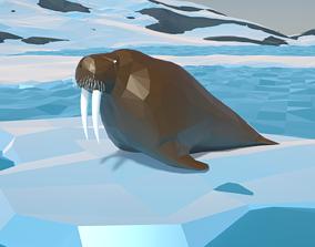 3D asset Walrus Low Polygon Animal Arctic sea ocean