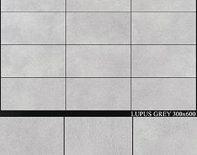 Yurtbay Seramik Lupus Grey 300x600 3D