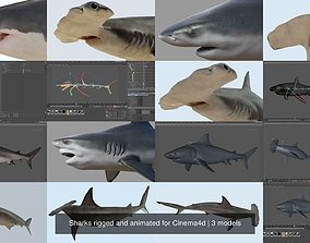 3D Sharks rigged and animated for Cinema4d