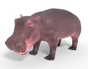 animated 3D Hippopotamus Model