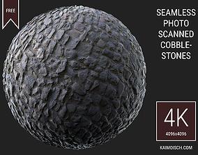 3D Scanned Seamless Cobblestone Street