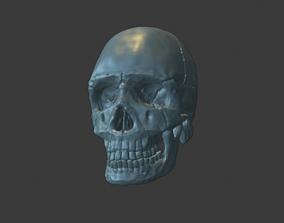 anatomy 3D print model Skull