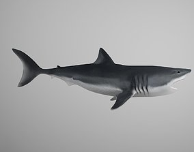 3D model animated Great White Shark