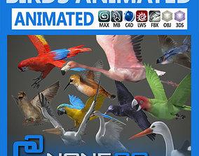 3D model Pack - Birds Animated