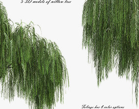 Set Tree Willow 3D