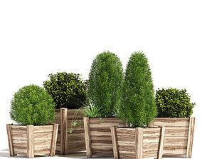 3D model bush Hardwood planters