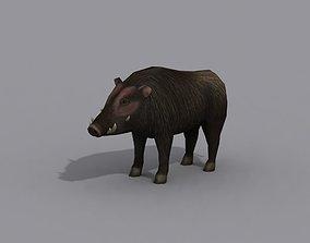 a boar 3D model