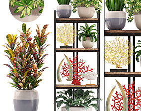 3D Rack with the decor of figurines and plants