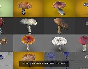 MUSHROOM COLECCION PACK 3D model