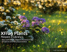 3D 2020 XfrogPlants Flowers 3 Library