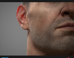 3D model Poligone Facial Hair Tool for Substance Painter