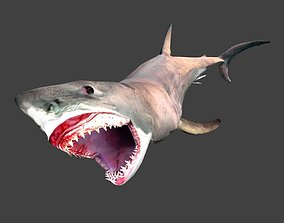 3D model animated realtime Great white shark