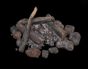 The Bonfire 3D model
