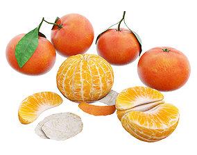 3D model Tangerines