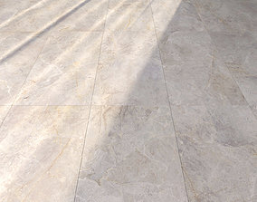 Marble Floor Amazon Bone 3D