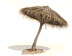 3D model Thatched Umbrella