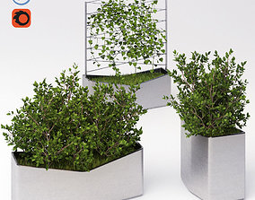 A set of elements of landscaping 4 3D