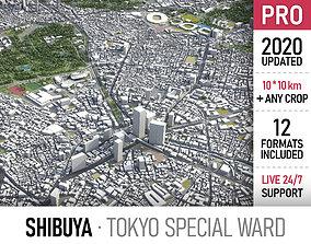 3D model Shibuya - Tokyo special ward