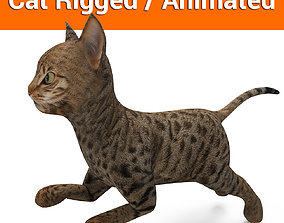 animated 3d Cat Animated Rigged low poly