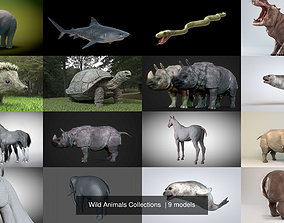 3D Wild Animals Collections