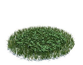 3D Green Grass Clovers