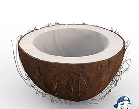3D model Coconut Half