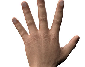 3D model rigged Male Hand