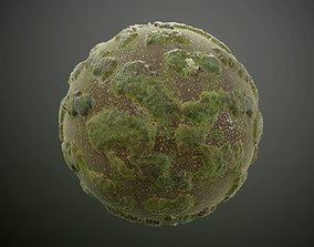 Mossy Lake Landscape Seamless PBR Texture 3D model
