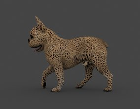 UVWD-007 Dog Textures Only 3D