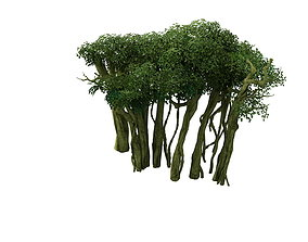 3D Game Model - Forest - Tree 14