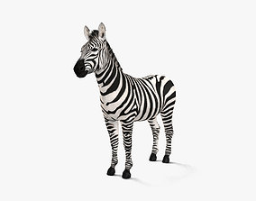 3D Zebra HD
