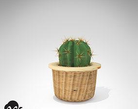 XfrogPlants Electrode Cactus 3D