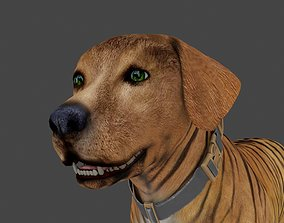 FLAB-010 Animated Dog 3D