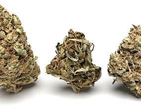 Cannabis Buds 3-Pack 3D